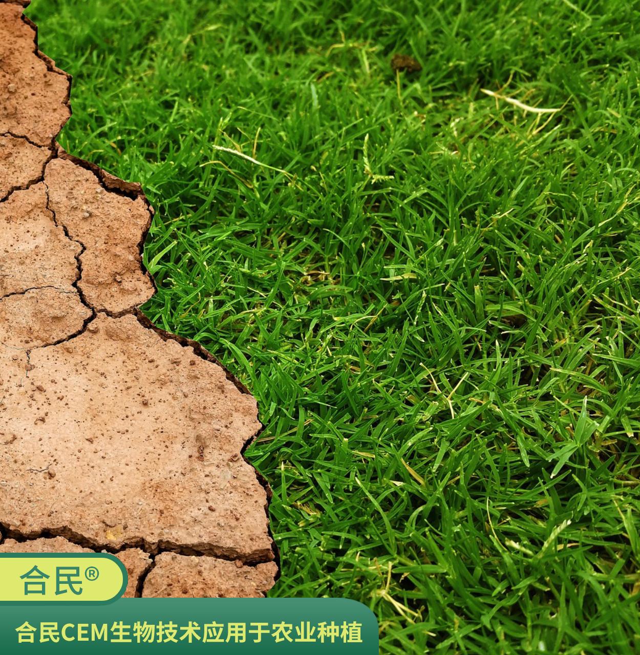 合民牌土壤提质液SEI-FV型